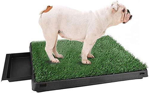 Trintion Hundetoilette Welpentoilette Hundeklo Hunde WC Trainingsunterlage Indoor Hundetöpfchen mit Kunstrasen Hunde Training Rasenmatte für Kleine Grosse Hunde ältere 63 x 50 x 7cm