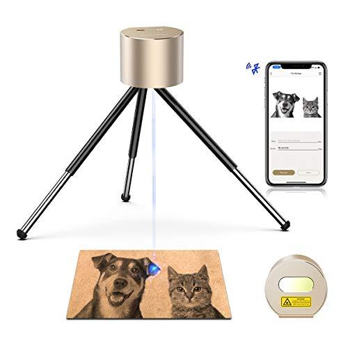 LaserPecker L1 Laser Graviermaschine Tragbarer Lasergravierer Gravur Gerät Lasern Schutz Gravieren Holz Leder-Gold