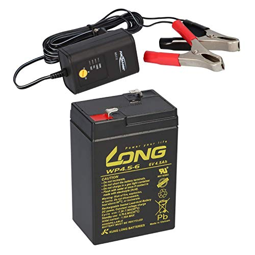 AGM BLEI AKKU Batterie 6V 4,5Ah kompatibel für Kinderfahrzeuge Kinderauto Kinder-Quad LC-R064R5P 3-FM-4,5 20HR 3 FM 4.5 3FM4,5 3FM4.5 6V 4Ah BLEIGEL Gel + LADEGERÄT