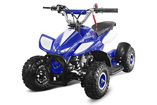 49cc Dragon 4' II Mini Quad ATV Bike Pocket Cross Midi Buggy Kinderquad Kinderfahrzeug (Blau)