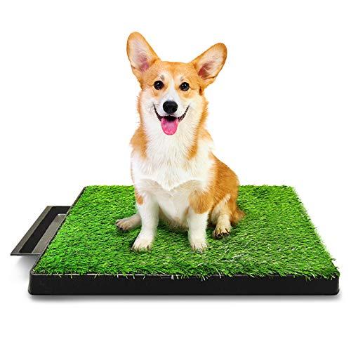 Hompet Hundeklo Hundetoilette Welpentoilette Trainingsunterlage, Indoor Hundetöpfchen, Hunde Training Rasenmatte für Kleine Hunde Grosse Hunde ältere 63 x 51 x 7cm