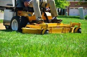 Aufsitz-Rasenmäher