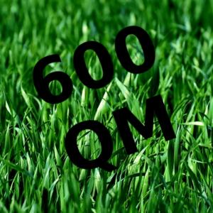 Mähroboter bis 600 Quadrat Meter