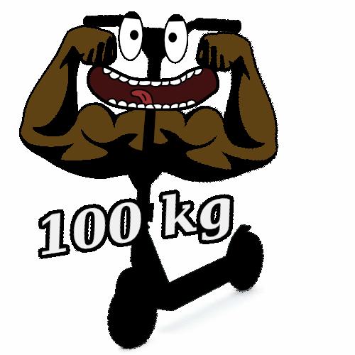 E Scooter, E Roller und E Tretroller bis 100 kg Belastung