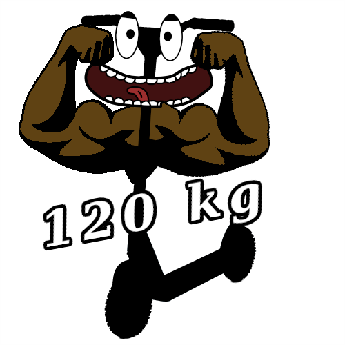 E Scooter, E Roller und E Tretroller bis 120 kg Belastung