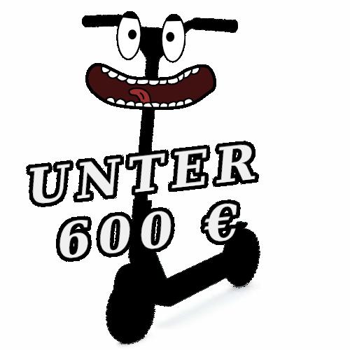 E Scooter, E Roller und E Tretroller unter 600 Euro
